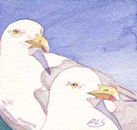 Seagulls at Pemaquid Point I - Watercolor by Paul Sherman