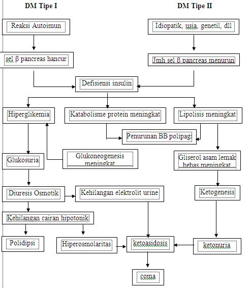 Apa Beda antara Glukosa, Sukrosa, dan Fruktosa?