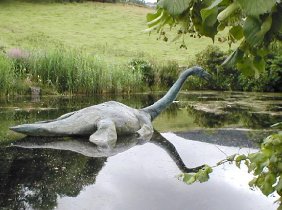 "facts about the loch ness monster The loch ness monster - kids love spooky stories check out ""the loch ness monster,†a read-aloud scary story about the legend of nessie."
