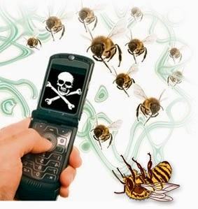bees affected by cell phones radiation Over time, the number of cell phone calls per day, the length of each call, and the amount of time people use cell phones have increased however, improvements in cell phone technology have resulted in devices that have lower power outputs than earlier models.