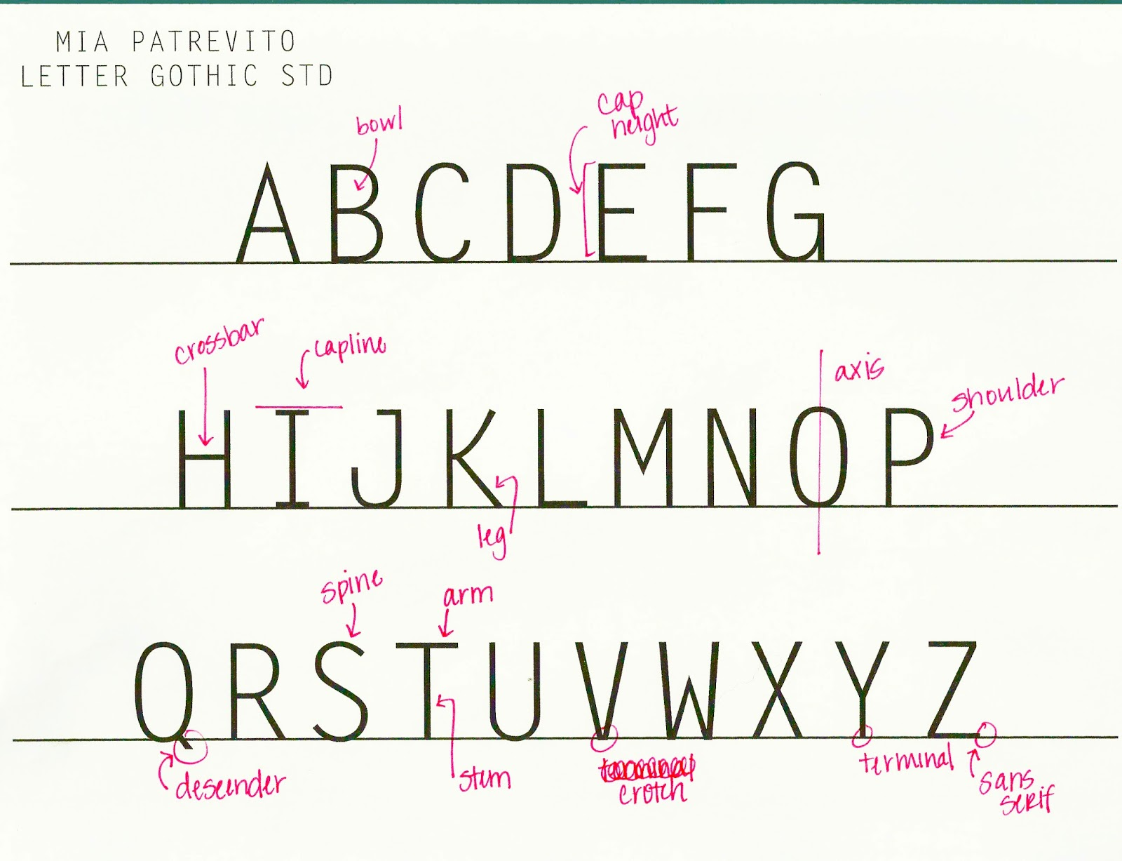 Anatomy of typeface