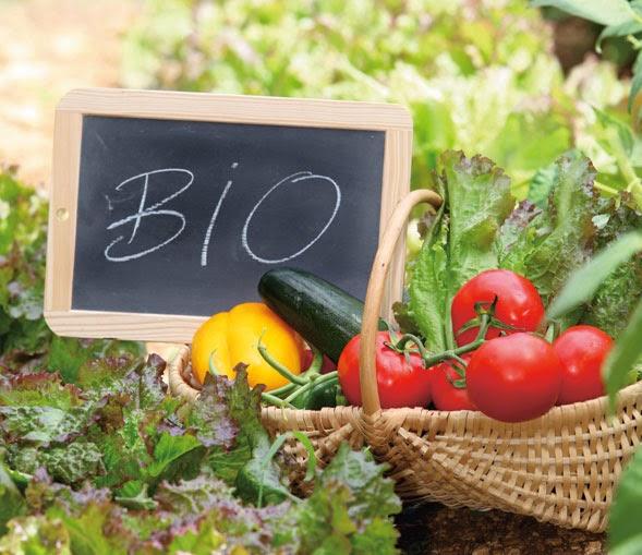 NELLE MENSE PUBBLICHE SICILIANE SOLO PRODOTTI BIOLOGICI E A KM 0