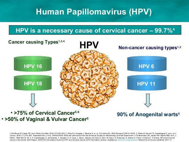 Cara Mematikan Virus HPV