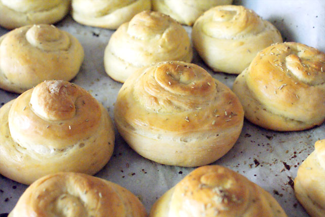 Rosemary and Olive Oil Dinner Rolls