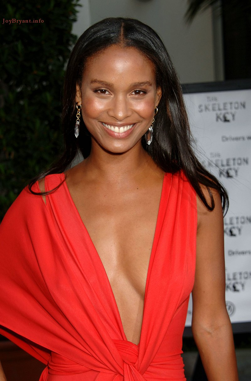 Joy Bryant Is An American Film Actress And Previous Fashion Model Joy