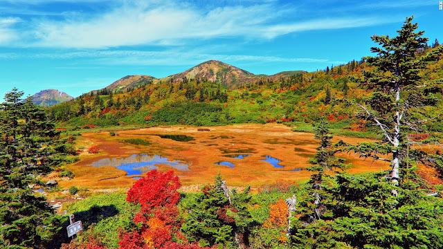Koya Pond (Niigata)
