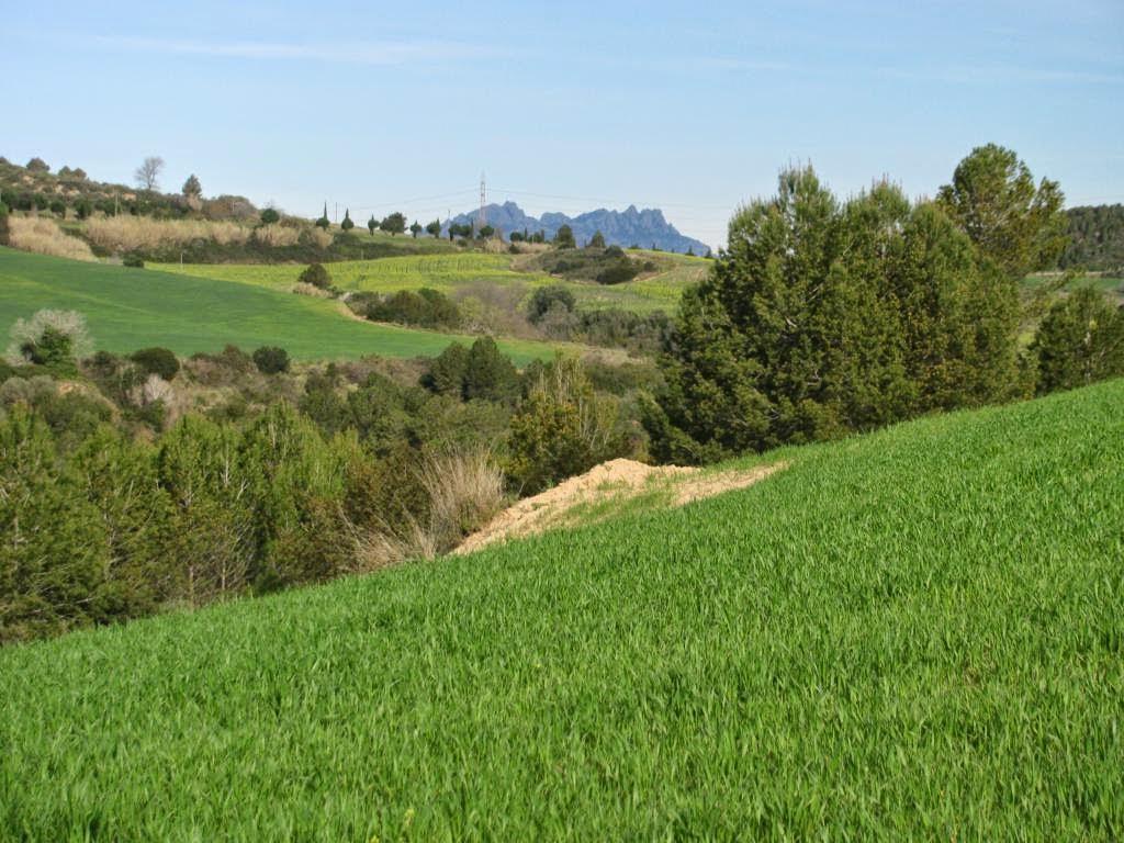 Molins de Rei - Montserrat