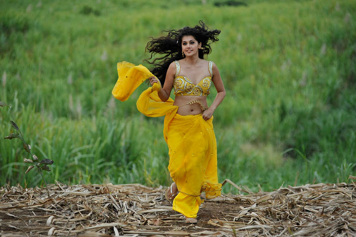 Mogudu Movie Actress Tapsee Spicy Navel Show Photos hot images