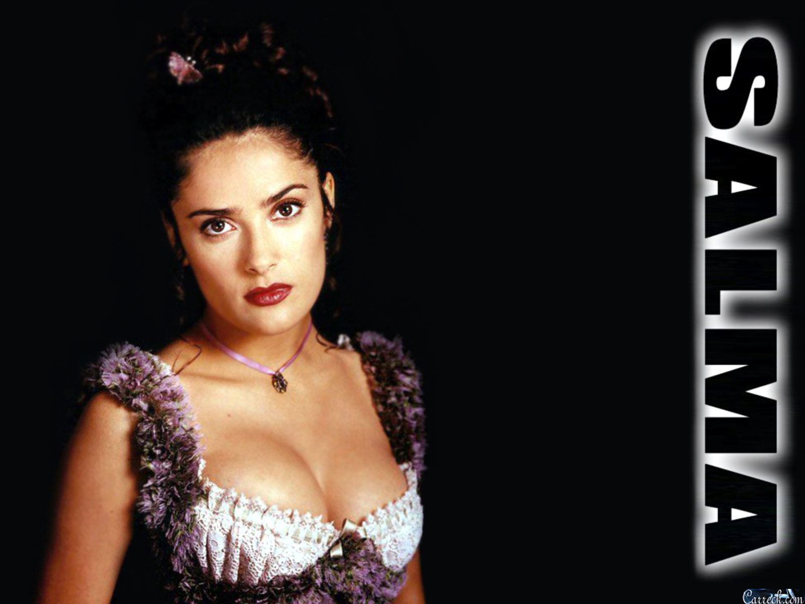http://2.bp.blogspot.com/-k1U7x_F3eow/T_HEubeVFaI/AAAAAAAABIc/QqgU-MnAlx0/s1600/salma+hayek+wallpaper+005.jpg