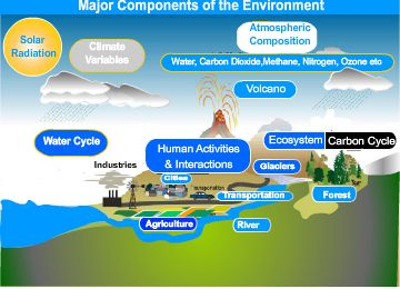 Major Components of the Environment