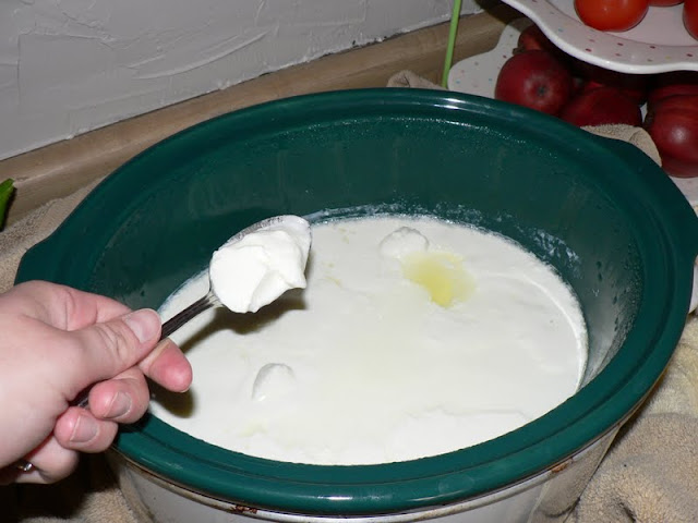 Crock Pot Yogurt - how to make yogurt in the crock pot!