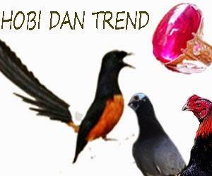 4 trend hobi yang sedang ramai