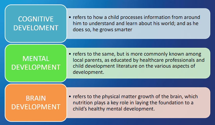 child development theories 2 essay This free psychology essay on child development theories is perfect for psychology students to use as an example.