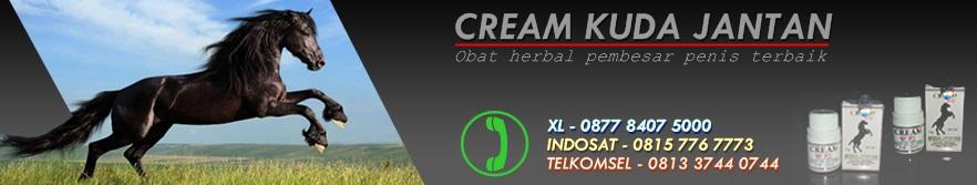 Cream Kuda Jantan