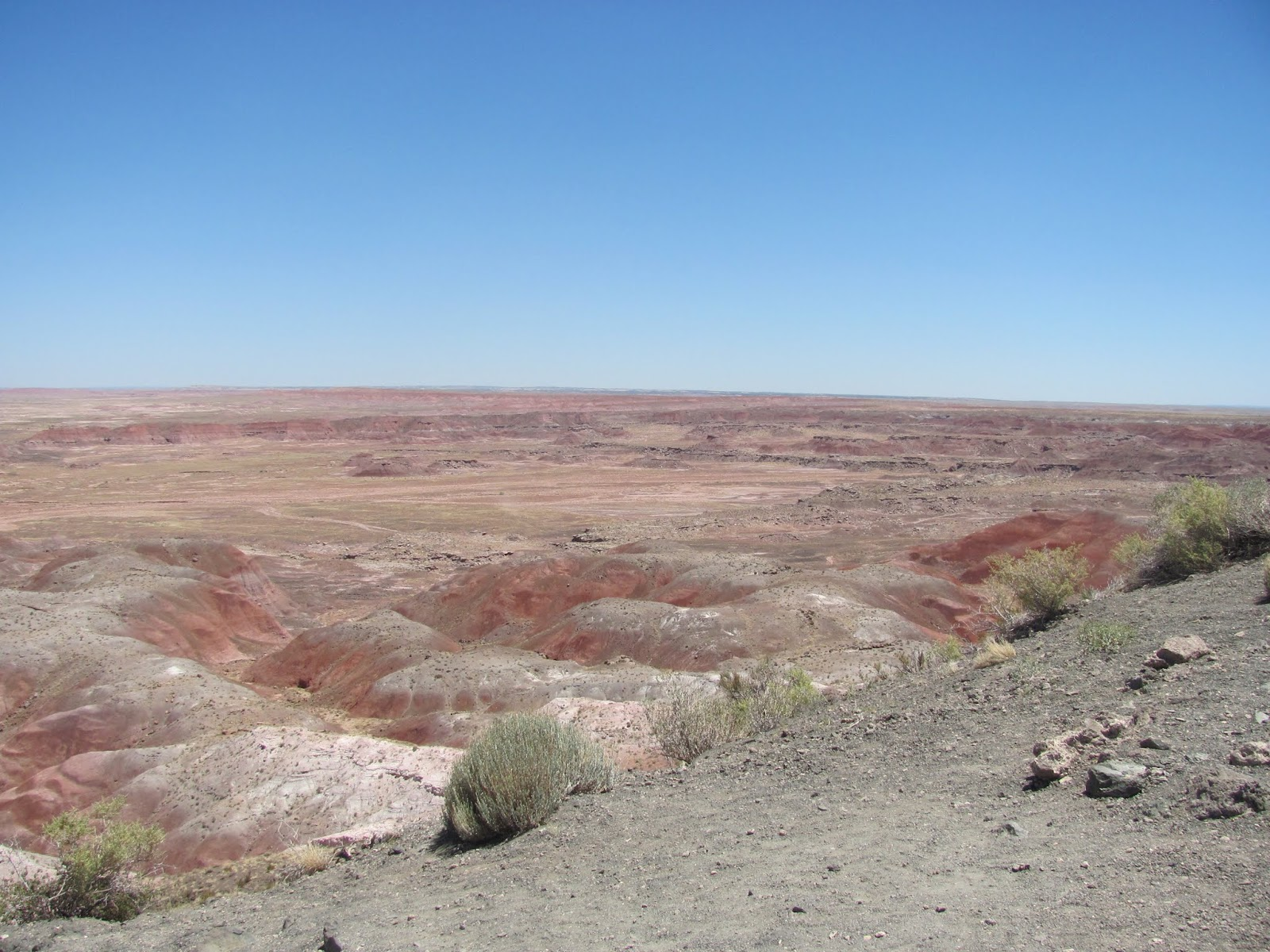 Small red mounds roll the landscape at Painted Desert in Petrified Forest National Park, Arizona