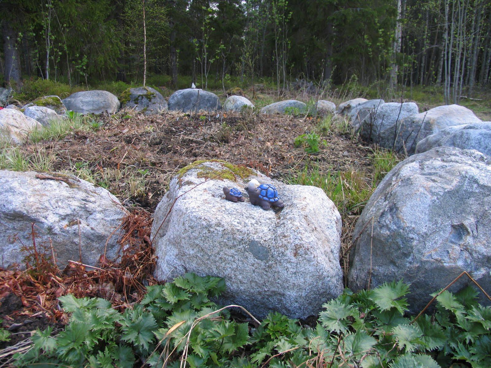 Visningsträdgården Hällans trädgårdsblogg: Nyodling och barnkammare