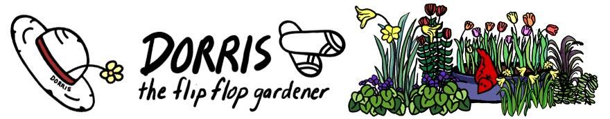 Dorris, the Flip Flop Gardener