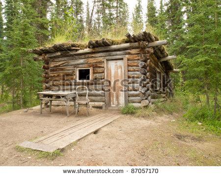 Wilderness skills hidden shelter inspiration