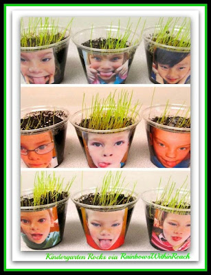 "photo of: ""Happy Hair: Grass Seed Kindergarten Science"" from Kindergarten Rocks via RainbowsWithinReach"