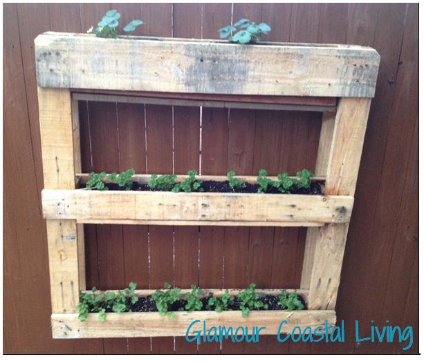 Vertical herb garden planter box glamour coastal living for Vertical planter boxes