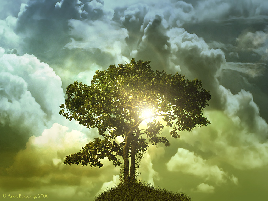 http://2.bp.blogspot.com/-k3J13oksDtU/TpNLUXIjPiI/AAAAAAAAAA4/qkHGnAJ6vPk/s1600/The_tree_of_life_Wallpaper_exfks.jpg