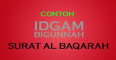 contoh idgam bigunnah dalam surat al baqarah