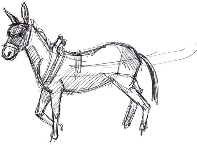 mule harness drawings tennessee walking mules wiring diagrams Kawasaki Mule 610 Wiring Schematic art by jeane nevarez mule in harness