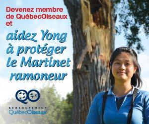 Devenez membre de QuébecOiseaux