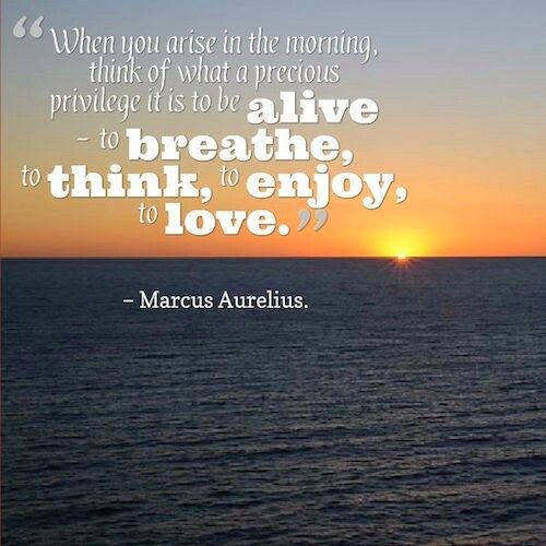 """""""When you arise in the morning, think of what a precious privilege it is to be alive ~ to breathe, to think, to enjoy, to love."""" ~ Marcus Aurelius; Picture of the sun rising on the ocean."""