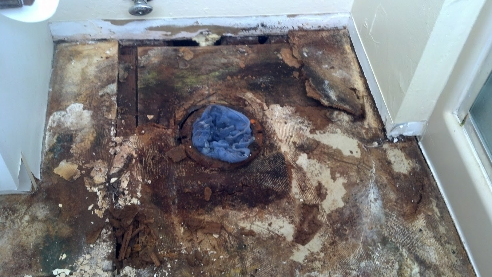 Steve 39 S Helpful Hints Handyman Blog Importance Of Replacing A Rotten Sub Floor