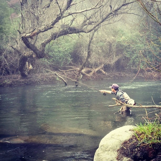 Keep calm and fly fish february 2015 for Putah creek fly fishing