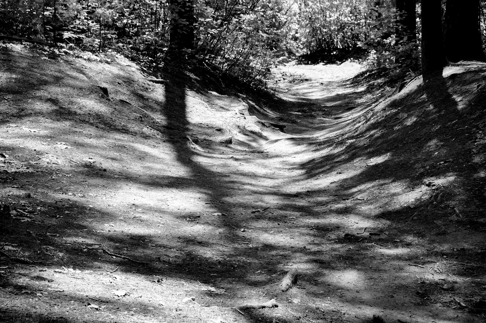 a worn path You literature class teacher is strict and have asked you to write an analytical research paper on a worn path to get extra points what do you write about.