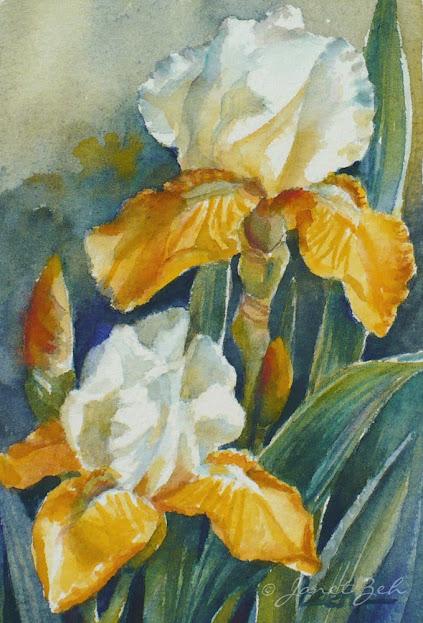 One of my iris watercolor paintings