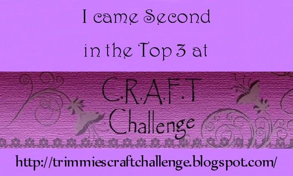 Top 3 Winner at C.R.A.F.T Challenge