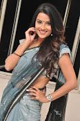 Jyothi seth sizzling saree photos-thumbnail-19
