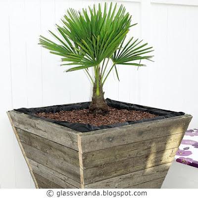 Gjør-det-selv/DIY: Råtøffe plantekasser i størrelse XXXL til uteplassen, isolert for PALMER!