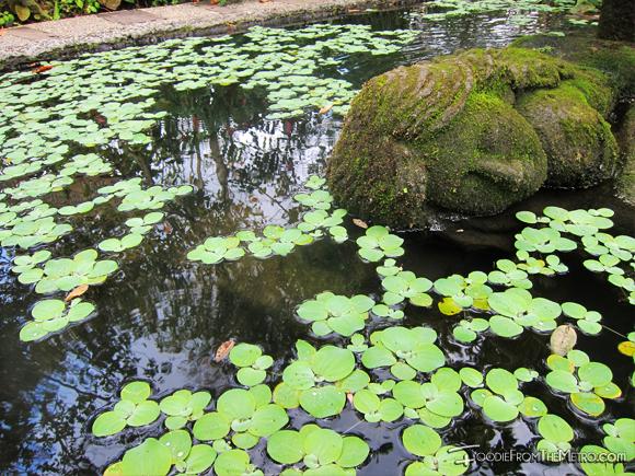 Yoga Statue Pond