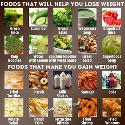 What Foods Help You Lose Weight
