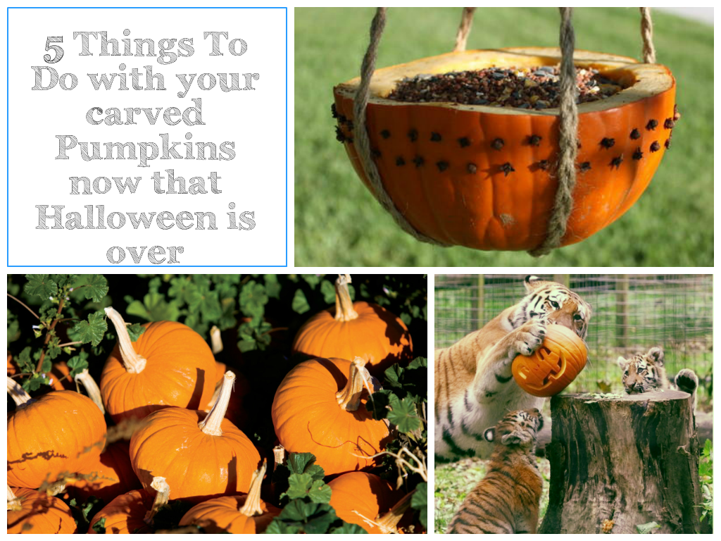 what to do with your carved pumpkin after halloween | get crafty