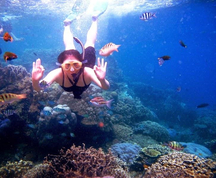 Paket Wisata Karimun Jawa Weekend