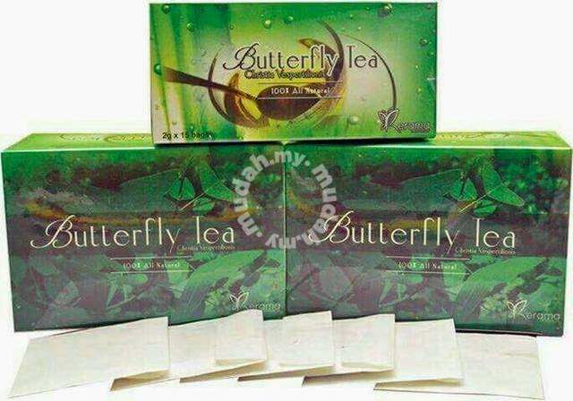 Butterfly Tea (Christia Vespertilionis) merawat kanser dan penyakit kronik (klick gambar)