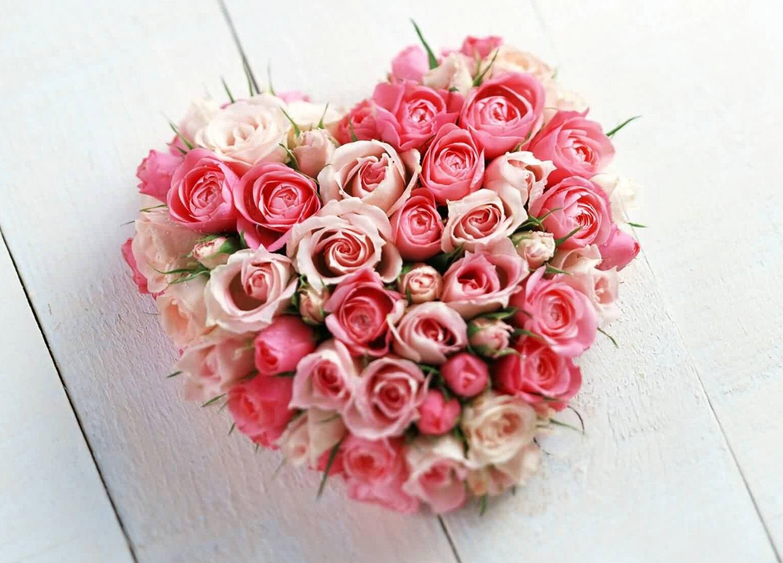 Love Flowers Wallpapers Beautiful Flowers Wallpapers