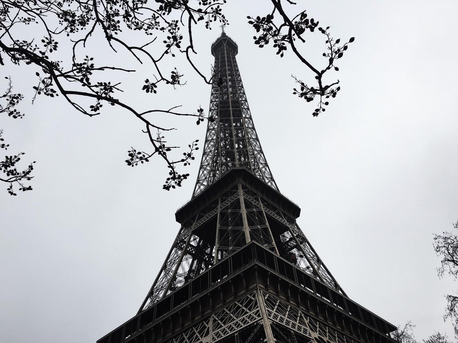 Eiffel Tower canvas messenger bag The Eiffel Tower in Paris Historic Famous Landmark Wintertime Picture Print canvas beach bag Black White 12x15-10