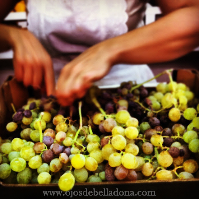 Uvas moscatel en el Mercado de Huelin , Málaga