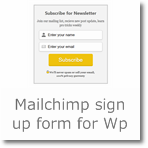 Professional Mailchimp Sign-up/Opt-in Form for Wordpress/Blogger