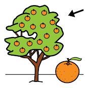 festa de la taronja