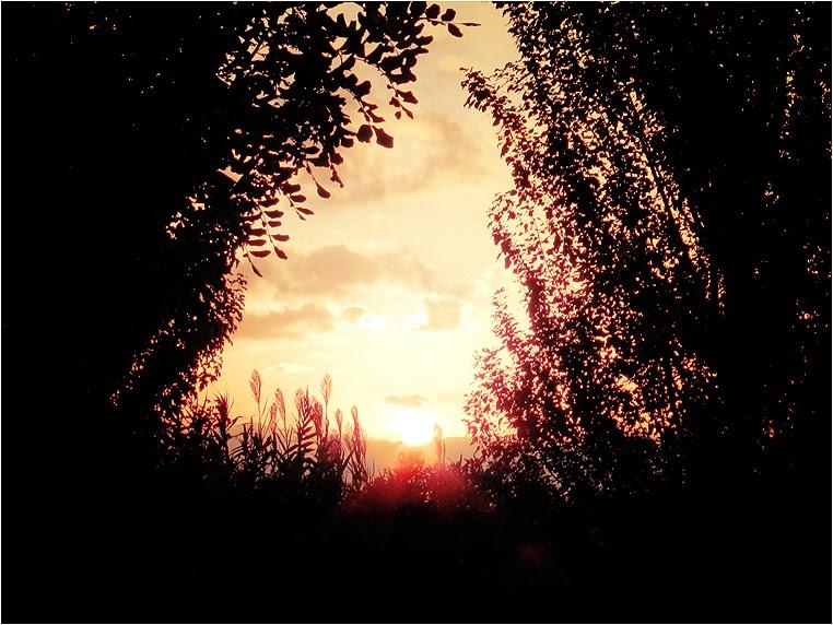 emphoka, photo of the day, Vanilla_jo, Nikon Coolpix P500