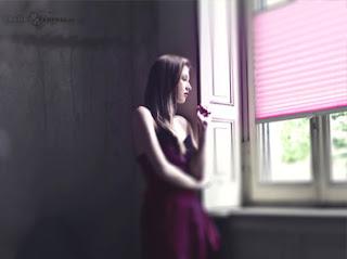 Plissee für Fenster