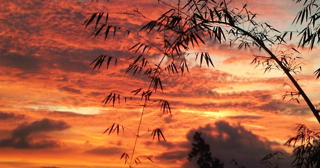 Quotes Shivers: Langit Berselimut Awan (part 1)