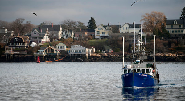 Not another new england sports blog new regulations may for New york fishing regulations